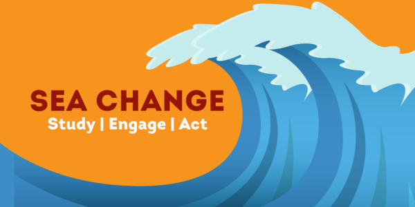 """Image Description: image of a blue wave on an orange background. The wave is curing toward the text """"SEA CHANGE Study 